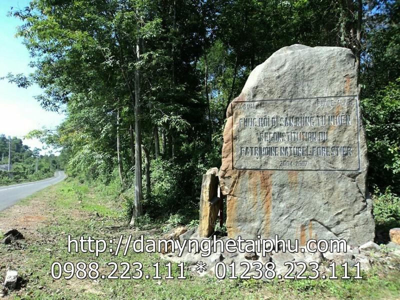 Bia đá, khắc bia đá 4
