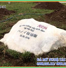 Bia đá khối tự nhiên 24